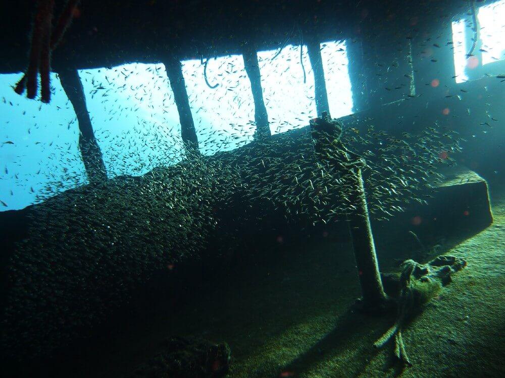 Bateaux, et avion, de nombreux vestiges sous-marin à découvrir