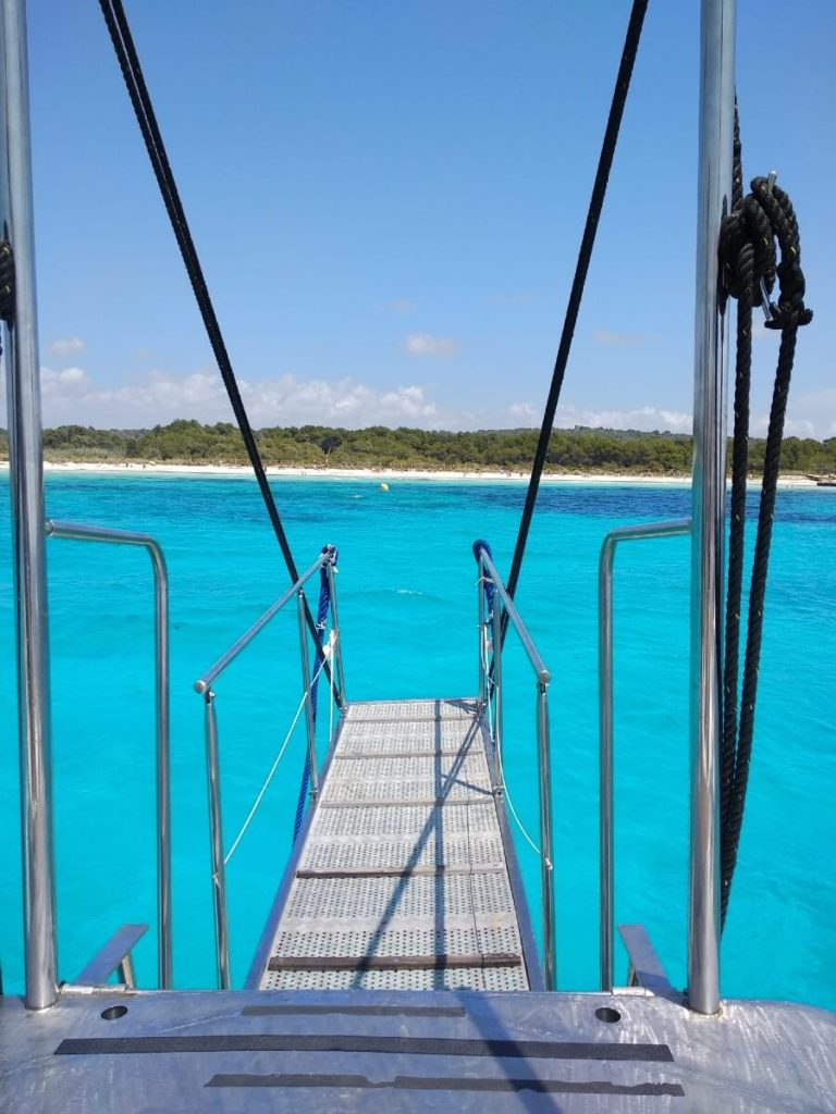 Opétation Snorkeling!