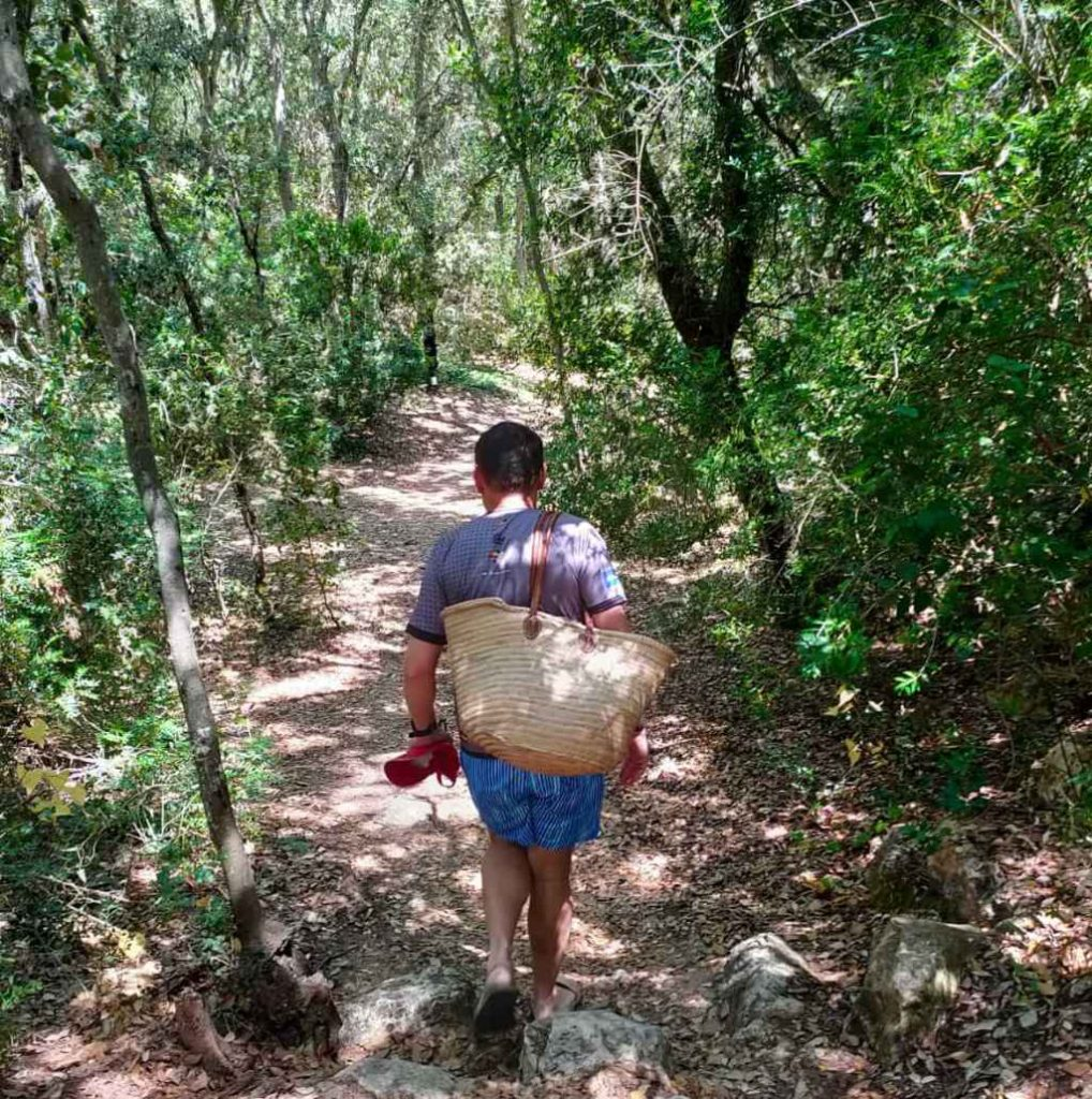 chemin forestier de Cala Rafalet à Menorca