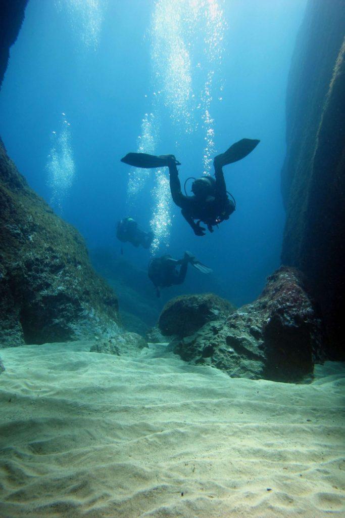 Div15 | Une Plongée En Pleine Réserve Marine ? Diving Fornells Sans Hésiter | Bons Plans Minorque